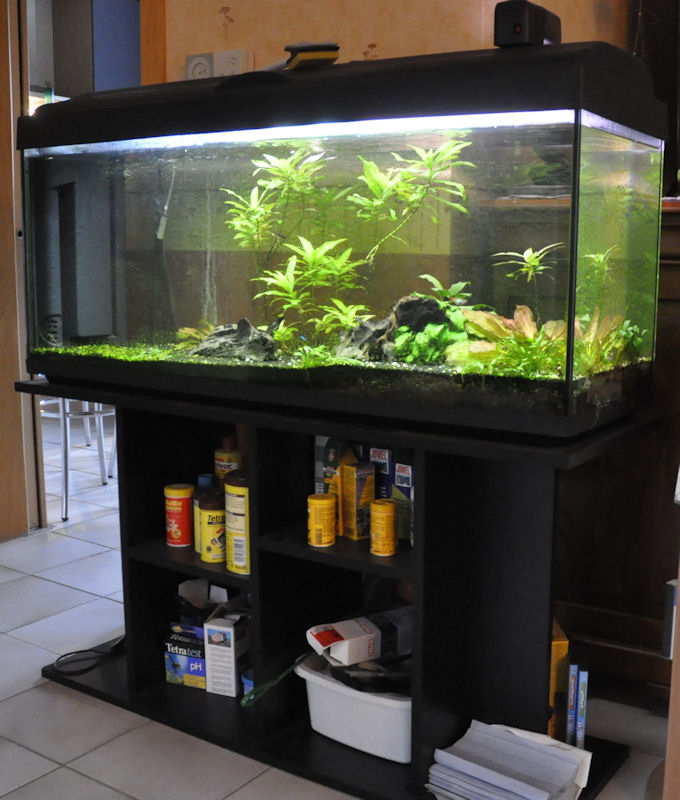 vendu aquarium 200 litres equip avec meuble. Black Bedroom Furniture Sets. Home Design Ideas